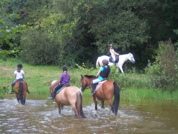 Initiation à la randonnée à cheval en Bretagne